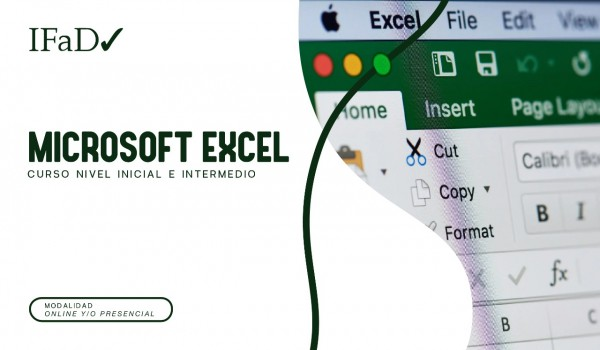 CURSO MICROSOFT EXCEL - NIVEL INICIAL E INTERMEDIO